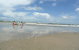 Isle of Palms!