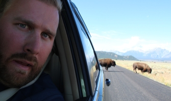 we were in the middle of a bison crossing. nbd.