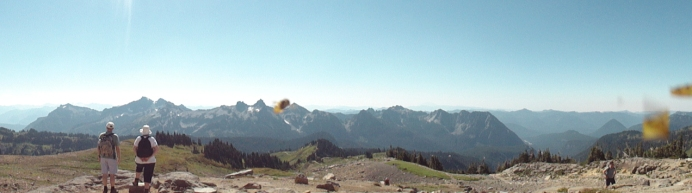 proof that the bees wouldn't leave me alone: see that blob in two places? this guy was hovering around my lens.